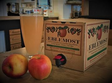 Billede af Æble Most 5 liter.