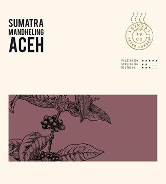 Billede af Sumatra Mandheling <br/>Hele bønner<br/>1 x 4 kg